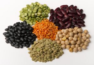 different species of legumes